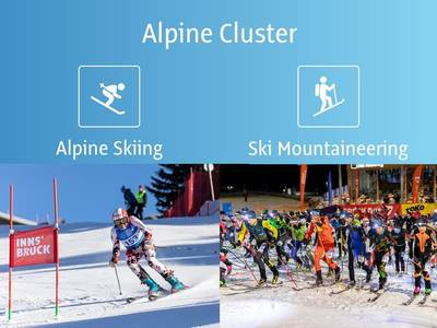 A Look Back at the WWMG 2020: Alpine Cluster