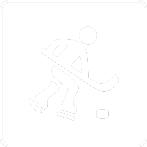 Pictogram ice hockey player
